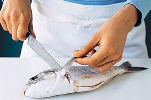 Обработка рыбы - полезные советы