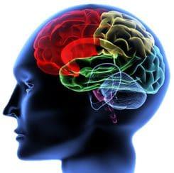 Функции невропатолога